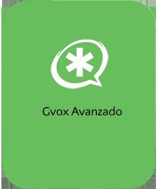 Gvox Avanzado