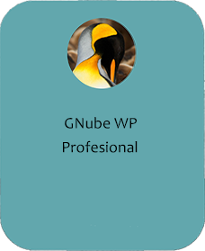 Gnube WP Profesional